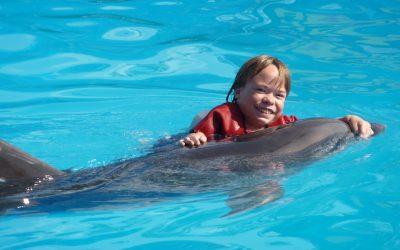 Delphin-Therapie auf der Krim